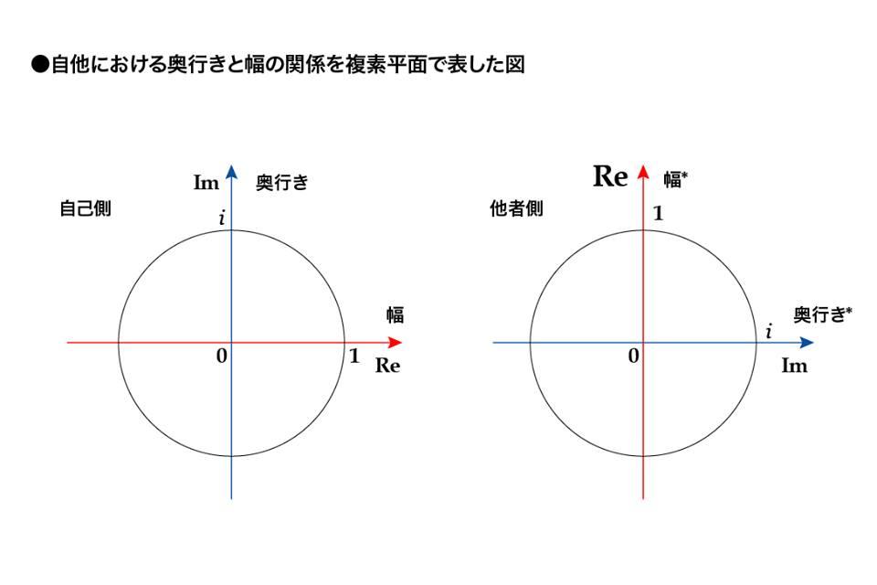 自他における奥行と幅の関係を複素平面で表した図