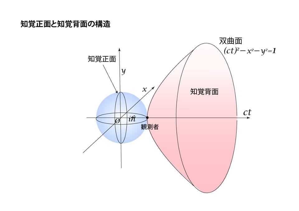 知覚正面と知覚背面の構造