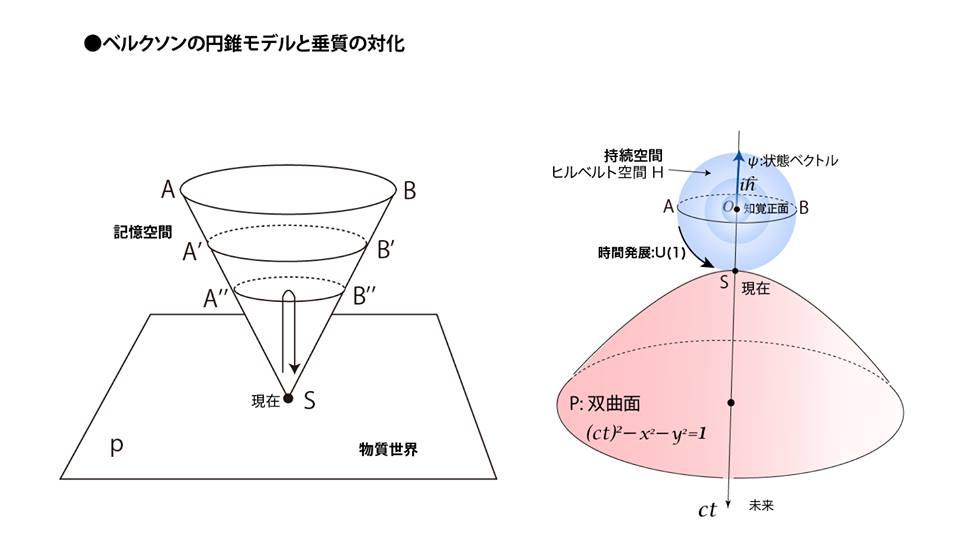 ベルクソンの円錐モデルと垂質の対化