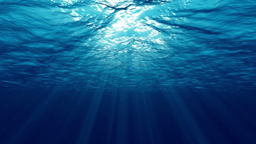 水面への浮上