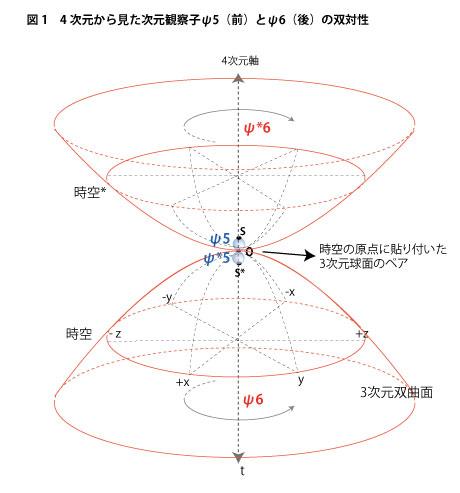 4次元から見た次元観察子ψ5とψ6の双対性